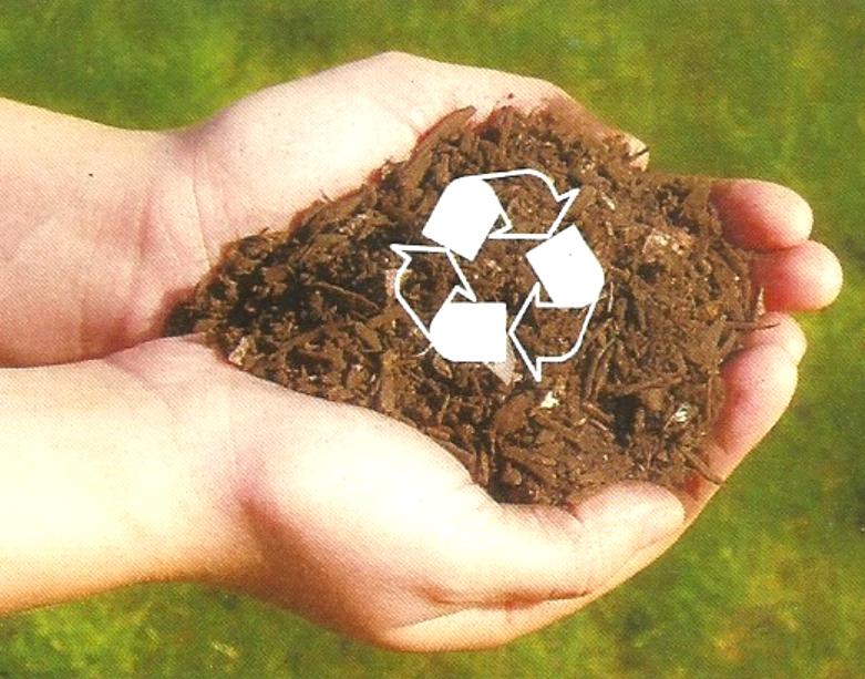 Dia Mundial da Reciclaxe